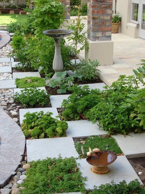 Оригинальный огород своими руками фото