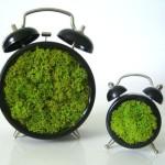 Green-Moss-art