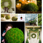 centerpiece-idea-moss-small