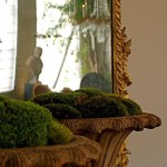 enchanting-spring-moss-outdoor-and-indoor-decor-ideas-with-moss-on-pot-as-well-as-window-glass-and-chanelier