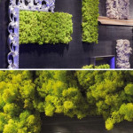moss-interior-living-walls